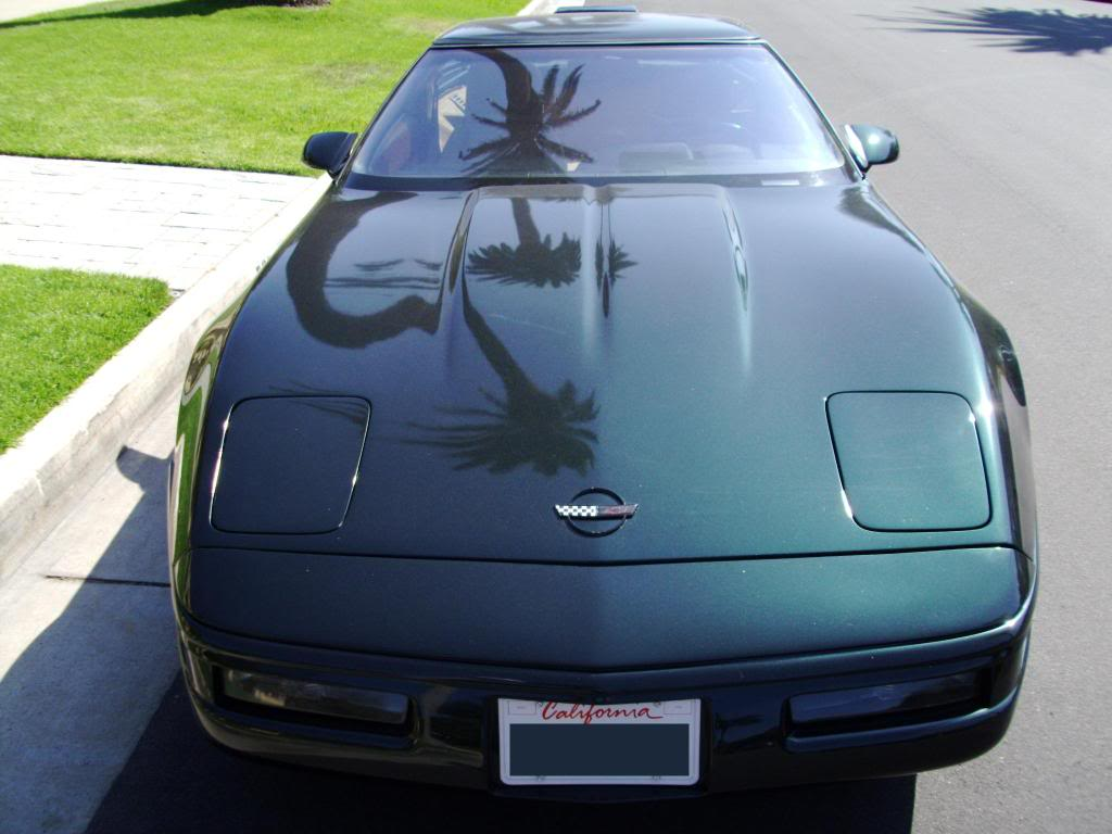 Polo Green 1991 GM Chevrolet Corvette