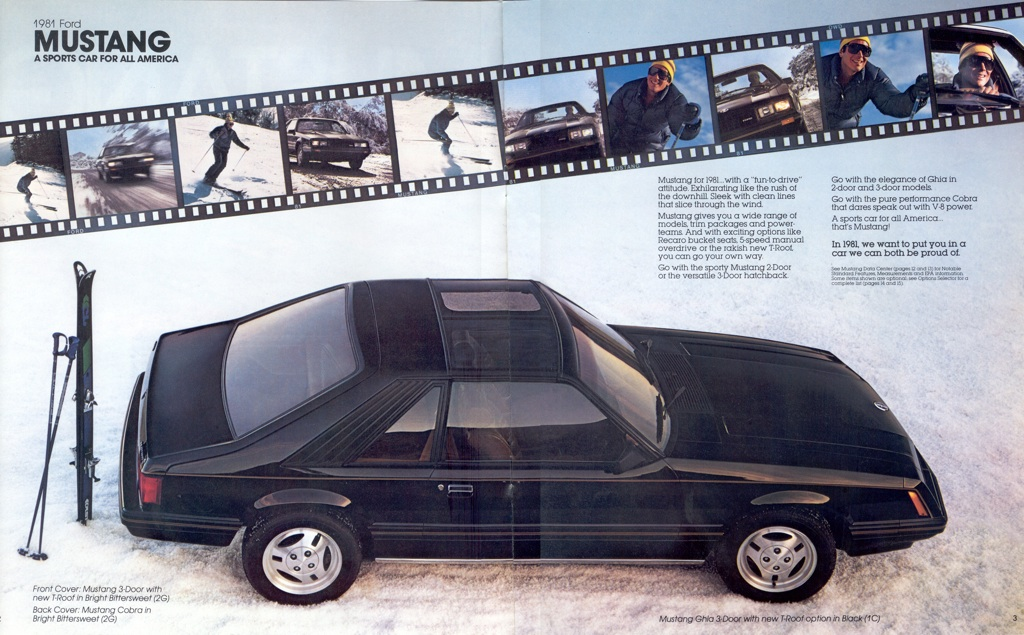 Black 1981 Ford Mustang