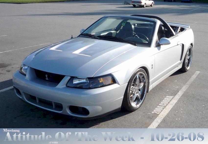 Silver 2004 Ford Mustang