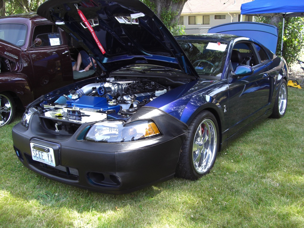 Mysti-Chrome 2004 Ford Mustang